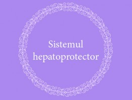 Hepatoprotective system