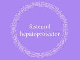 Sistemul Hepatoprotector